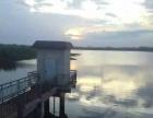 华维东土地:湛江市徐闻县670亩水库养殖场对外转包