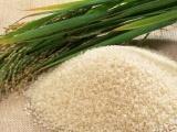 供应 南川油米销售   重庆大米批发