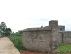 207国道旁白泥坡村 仓库 1334平米