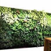 【昭鑫开创青州先河】植物墙价格 北京植物墙 天津生态植物墙