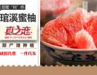 福建南平市真之恋十大品牌之一,招商加盟批发红心柚一件代发欢