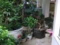 东坝中心地段,旭春苑,震后多层,精美装修带花园,急售