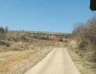 云南省昆明市东川区480亩林地转让价格面议