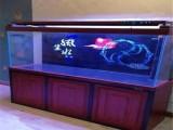 镇江锦鲤养殖场批发 临售锦鲤鱼