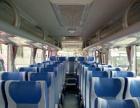 旅游大巴 中巴 商务车