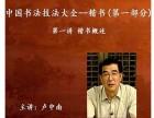 卢中南魏碑楷书技法教学光盘29讲8DVD