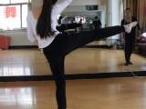 济南爱尚舞蹈学校 专业流行舞 抖音爵士舞艺考中国舞拉丁舞