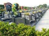 荆州市八岭山墓地表-亲民