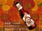 玛咖啤酒 玛咖啤酒厂家特色啤酒免费代理