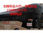 %潍坊到泰兴的客车 汽车直达 15689185150%/豪华