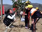 深圳2018劳动节户外活动休闲旅游亲子活动CS野战农家乐
