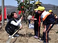深圳农家乐厨神比赛亲子农耕体验CS野战亲子拓展活动有意义