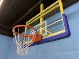 河北沧州厂家定制生产普通弹性篮球框