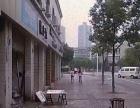潼南 潼南区政府旁正西街 商业街卖场 73平米