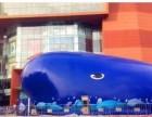 仿真恐龙模型出租 鲸鱼岛出租