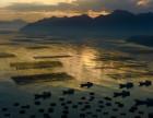 霞浦滩涂旅游摄影团