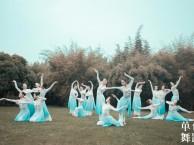 长沙芙蓉区的成人舞蹈教练培训 中国舞古典舞