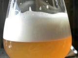 青岛利斯曼啤酒 由青啤酿酒师傅匠心打造 德式口味 进口麦芽