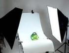温州摄影培训瓯越摄影班常年招生,随到随学!