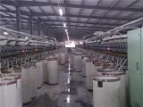 河北环锭纺纯涤纱40支 市场价格
