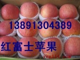 陕西冷库纸袋红富士苹果产地批发价格