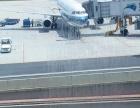 南京禄口国际机场航空运输宠物螃蟹等加急托运