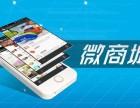 宜昌微信公众号开发,新网塔科技