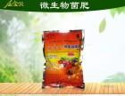 金宝贝菌肥是水稻好伴侣
