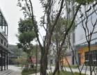富春硅谷带装修的,杭州野生动物园对门146方采光好