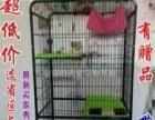 新买的猫笼子