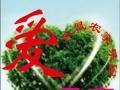 潮州土特产凤凰畲鹅粉斜鹅粉薯粉(鸡肠粉)