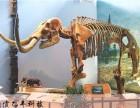 提供仿真恐龙 恐龙骨架 仿真艺术品