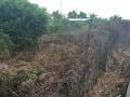 即买即建 南朗左步村 土地 300平米
