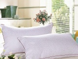 酒店宾馆白色高弹羽丝棉高档枕芯学生枕专用