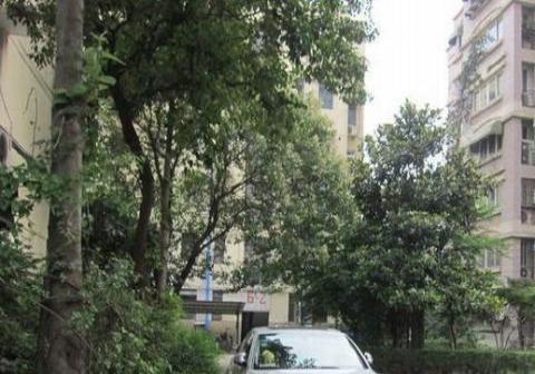 公寓 紫金山 南京林业大学 皮肤病医院 玄武湖 花园路