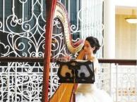 小提琴表演演出萨克斯沙画魔术泡泡秀外籍乐队模特走秀