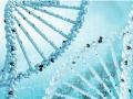 上海健康管理 基因检测企业