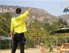 cku黄金低音犬舍提供家庭养犬训练不良行为纠正赛管