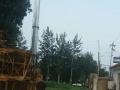 豪德 潍城豪德附近 厂房 3300平米