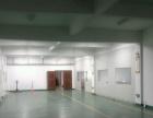 300到1100平 办公 电商 研发车间 有水电货梯
