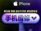 专业官解苹果ID锁