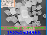 纯正热敷盐/大青盐/热敷包专用盐/理疗用