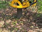 挖树机出租 3分钟智能挖树 挖树队园林公司专用起树机 三普牌