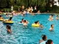 千年古坝夏天避暑好去处、免费游泳、采摘绿色果蔬