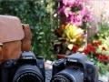 0首付买尼康、佳能、索尼、卡西欧等相机。