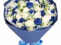 给生病奶奶送什么花