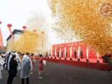 漳州出租推杆多米诺启动仪式 启动球 启动翅膀道具