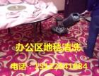 天津地毯清洗公司和平区小白楼地毯清洗消毒杀菌