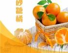 正鸿柑橘 果园新鲜采摘 品质保证