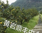 江囗工业区净土地11.8亩出售